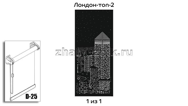 Перфорированная рулонная штора системы D-25 с макетом Лондон-топ-2
