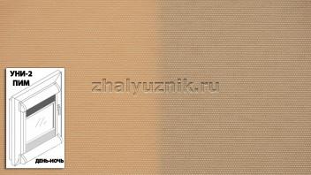 Рулонная штора системы уни-2 с пружиной День-Ночь, с тканью - Альфа персиковый (Амиго)