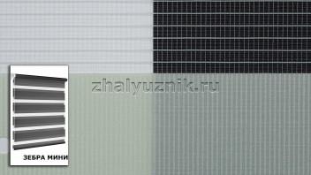 Рулонная штора системы Зебра мини с тканью Стандарт Фисташковый (Амиго)