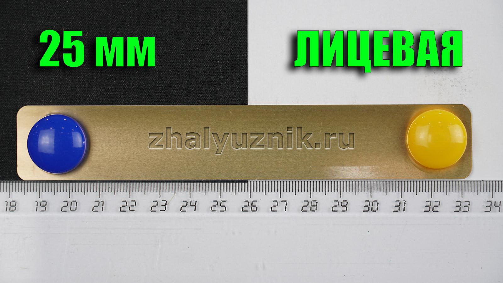 Горизонтальные жалюзи Холис-25, цвет медь, глянец, артикул-199 (Интерсклад)